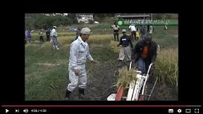 アフリカの農業と日本の技術支援、そして震災後復興