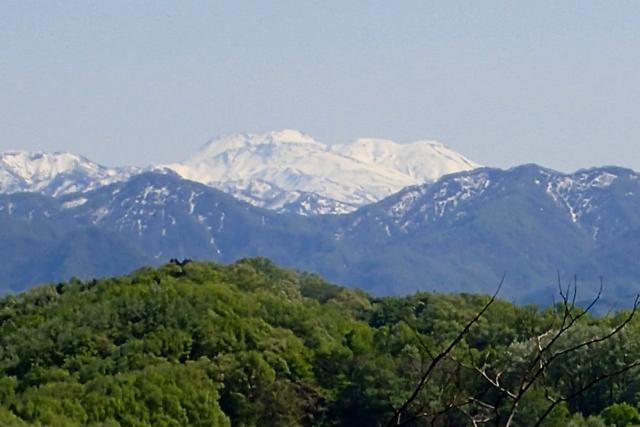 雪山遠望白山方面
