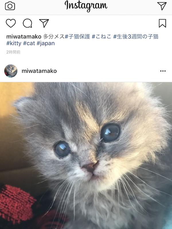 Instagramの画面