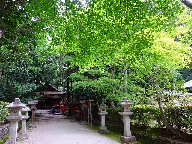 17,5,3 大田神社