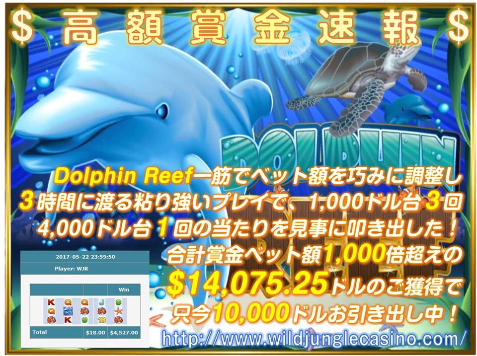 Dolphin Reef 合計賞金額 $14,075.25ドル