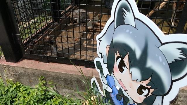 東武動物公園06