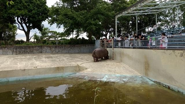 東武動物公園015
