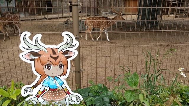 東武動物公園016