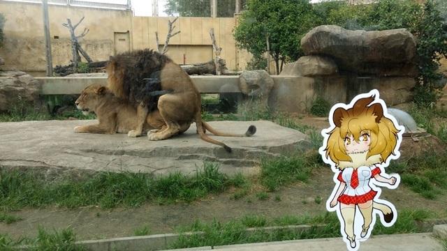 東武動物公園017