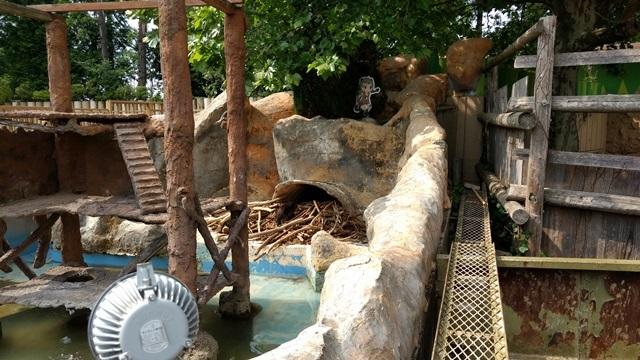 東武動物公園028