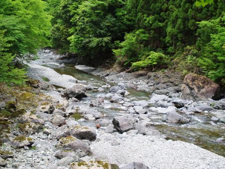 渇水の舟の川本流ブログ用
