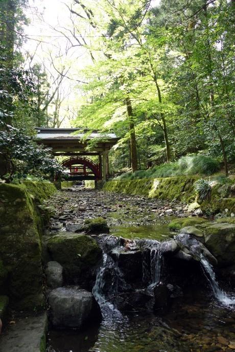 20170503新潟 弥彦神社 (3)