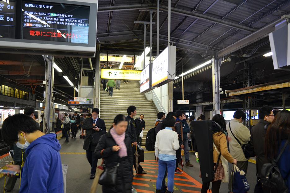 tsuru140224_39DSC_0021.jpg