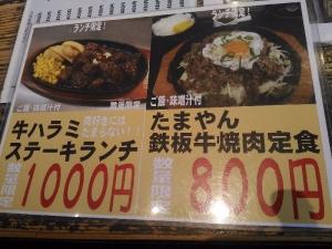 YamagaTamayan_001_org.jpg