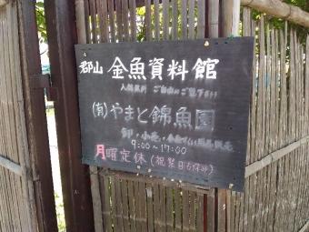 YamatokoriyamaKingyoen_011_org.jpg