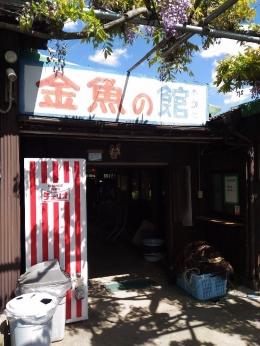 YamatokoriyamaKingyoen_012_org.jpg