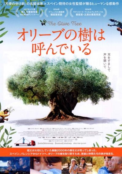 オリーブの樹は呼んでいる_01