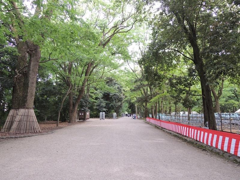 下鴨神社 糺の森(ただすのもり)