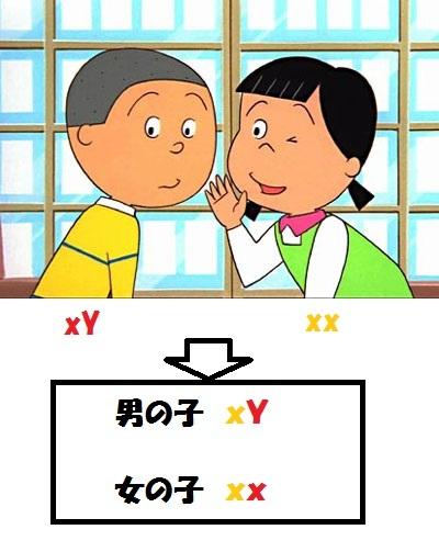 磯野カツオ 花沢花子 2