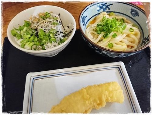 お江戸6DSC_1099
