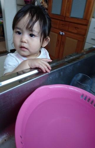 帰宅して手洗い2