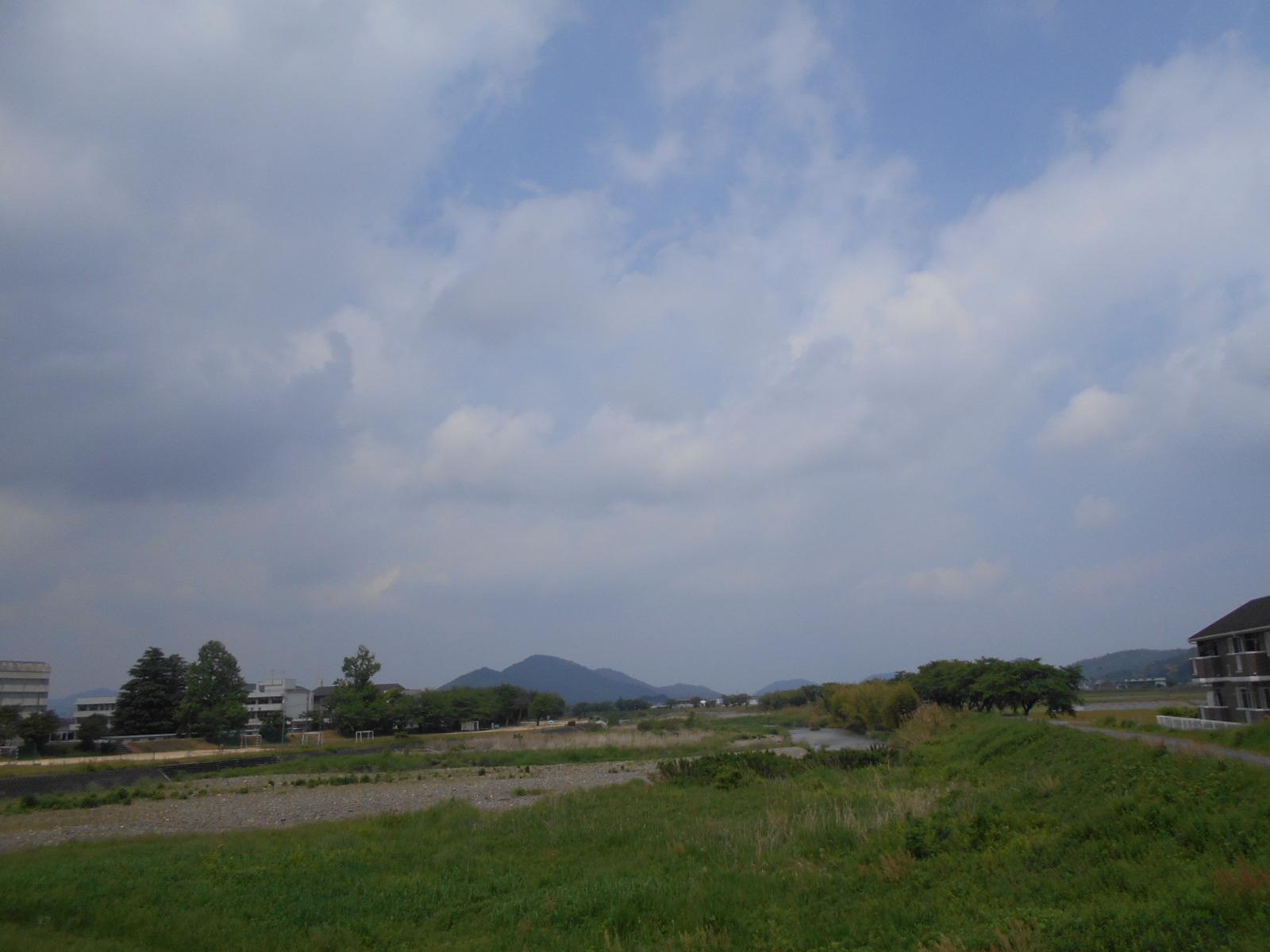 DSCN9555.jpg