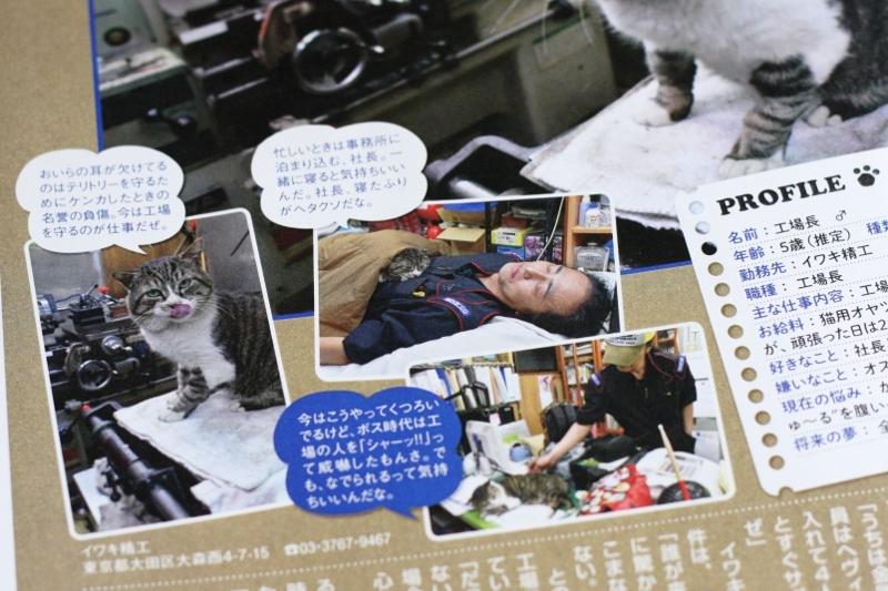 イワキ精工 工場長 猫 ねこ 女性セブン 大田区 池上 パンタレイ