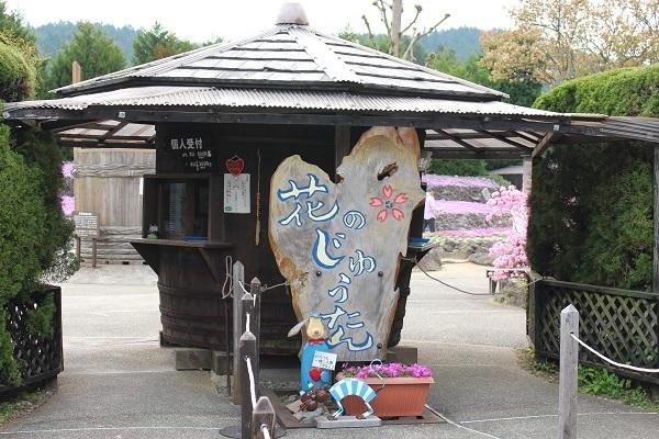 2017.05.14 花のじゅうたん①-1