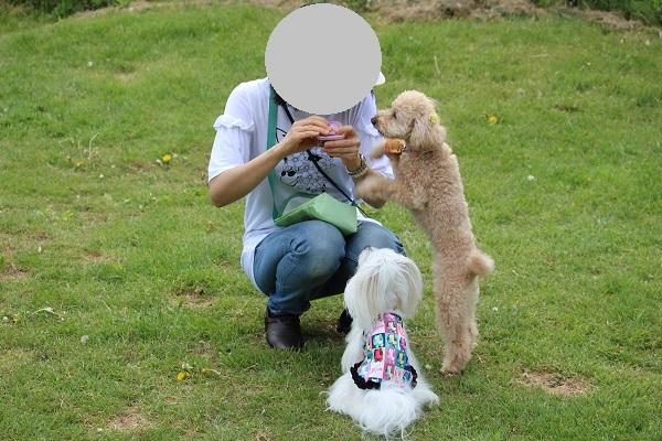 2017.05.23 こどもの日のお出掛け②-2