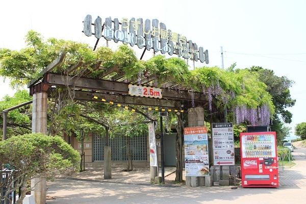 2017.06.06 淡路島旅行1日目② 道の駅うずしお-1