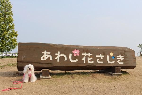 2017.06.07 淡路島旅行1日目⑤ あわじ花さじき-1