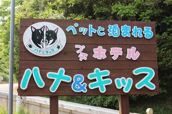 2017.06.08 淡路島旅行1日目⑥ ハナ&キッス①-1