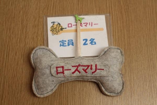 2017.06.08 淡路島旅行1日目⑥ ハナ&キッス①-8