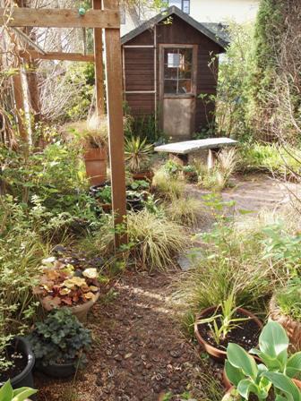 my-garden 001