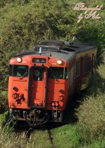 3941D「快速ことぶき」
