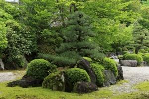 三室戸寺庭園にて