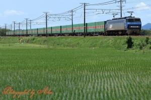 56レ(=EF200-7牽引)
