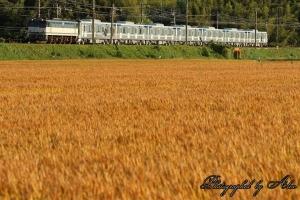 9866レ「日比谷線13000系甲種輸送」(=EF65-2070牽引)