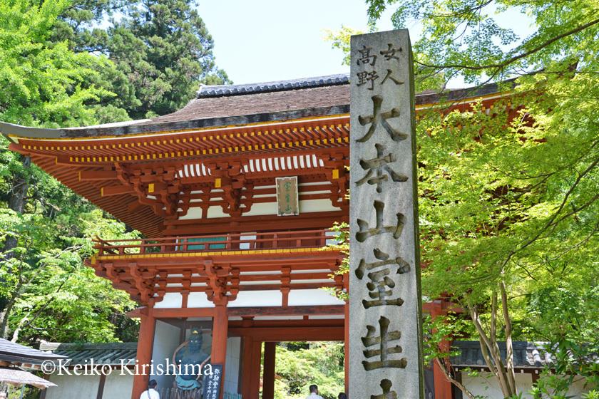 Murouji274.jpg