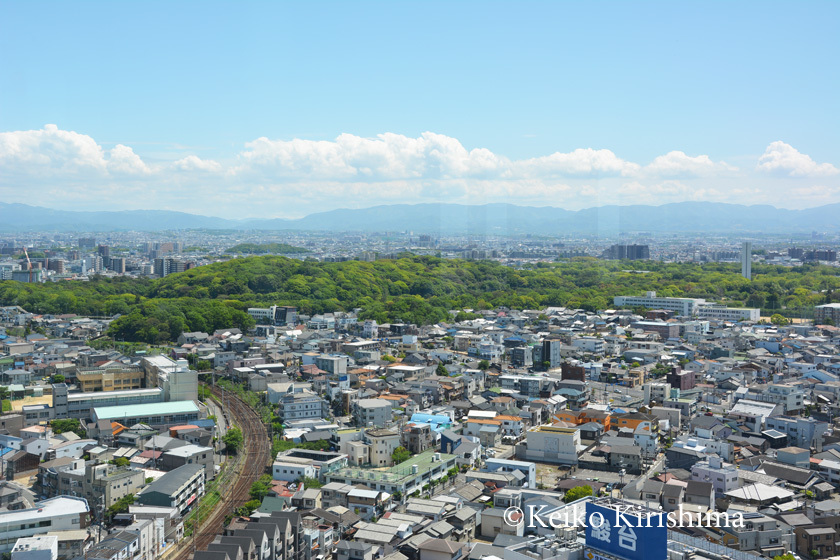 Sakai-City-Hall265.jpg