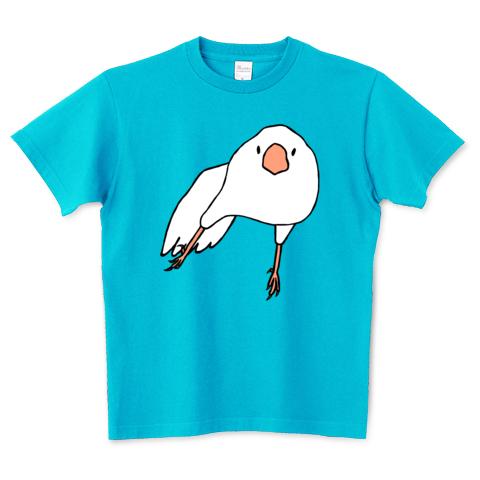 スサー 白文鳥 カラー