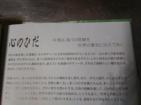 DSC_022629 (6)