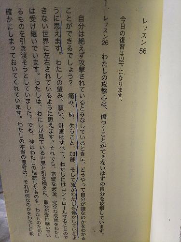 DSC_014516.jpg