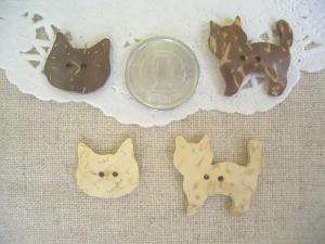 ココナツ:ネコ4種