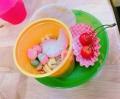 s-mi2906IMG_0126.jpg