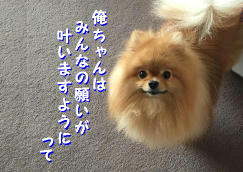 blog201707072-1_03.jpg