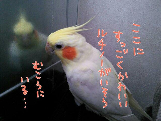201706131017361fb.jpg