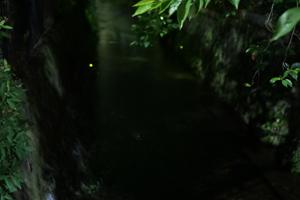 170531-2.jpg