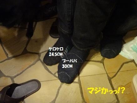 DSC04339 - コピー