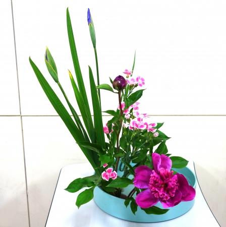 DSC00785-盛り花170508