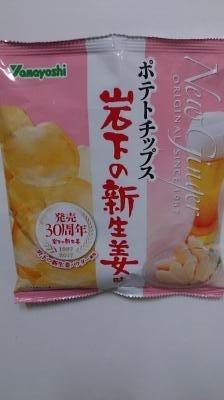 DSC_0013_iwasitashinshogua.jpg