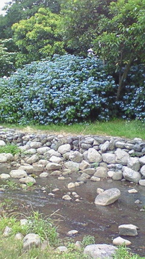 鳥屋野潟公園12