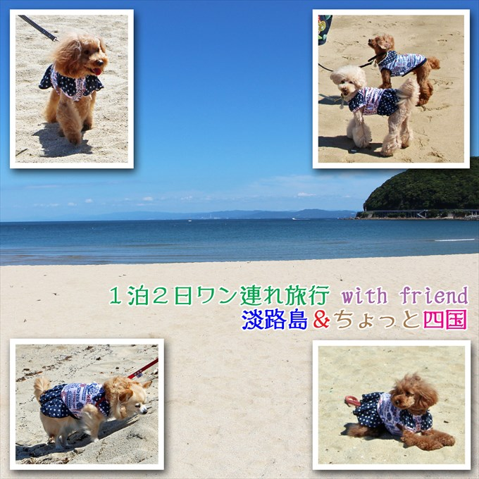 116_20170705144929f9e.jpg
