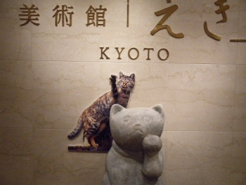 岩合光昭写真展 ねこの京都1